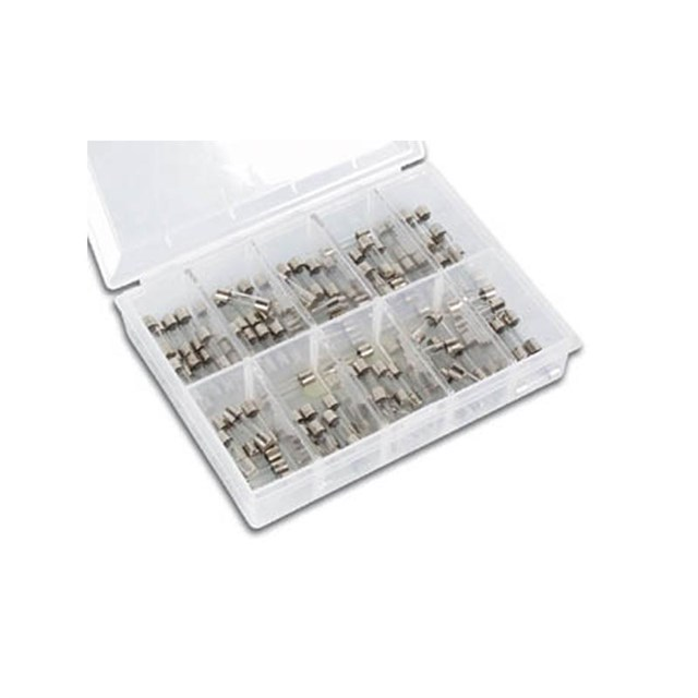 Fuse Set 100pcs 5x20mm Fast